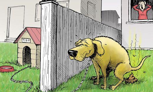 Wenn der Nachbarhund auf Besuch kommt