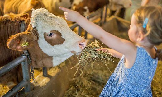 400 der 1200 bäuerlichen Vermietungsbetriebe sind Mitgliedsbetriebe von Urlaub am Bauernhof