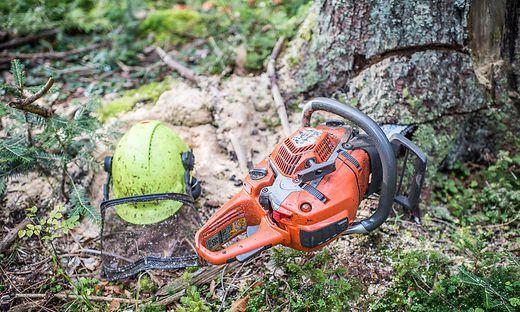 60-Jähriger starb bei Forstarbeiten in Reißeck: Obwohl der Mann einen Schutzhelm getragen hatte, kam für ihn jede Hilfe zu spät (Symbolfoto)