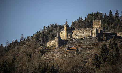 Auf Südhängen, wie bei Burg Glanegg, sind Wiesen und Wälder derzeit extrem dürr