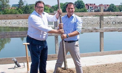 E-Stmk-Vorstand Graf und SPÖ-Schickhofer pflanzten Baum