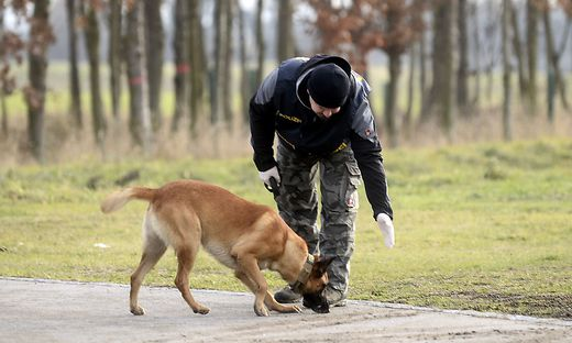 Beamter mit Polizeihund bei der Spurensuche in Tallesbrunn