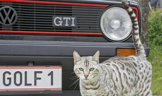 K�RNTEN: GTI-TREFFEN AM W�RTHERSEE