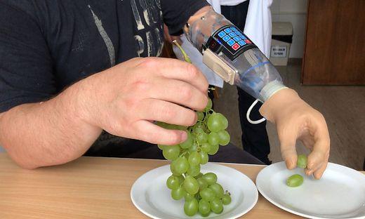Mithilfe des sensorischen Handschuhs könnte es künftig möglich sein, mit  myoelektrischen Armprothesen Trauben so anzufassen, dass sie nicht zerdrückt werden