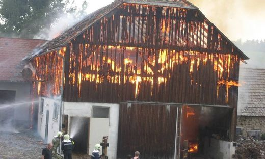 Zehn Kühe aus brennender Scheune im Waldviertel gerettet