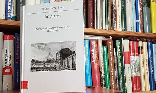 Elke Hammer-Luza, Im Arrest, Böhler Verlag, 522 Seiten, 85 Euro