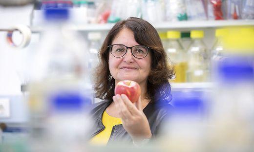 TU Graz, Biochemie, Unvi.Prof. Berg & Team, Apfel