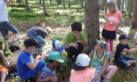 Andrea Rinnhofer erklärt den Kindern, worauf sie im Wald achten sollen