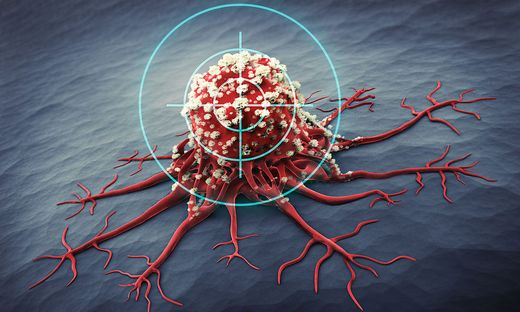 Zürcher Forscher sagen den Krebszellen mithilfe von Viren den Kampf an
