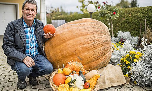 """Horst Jöbstl mit einem 200-Kilo-Kürbis, Sorte: """"Atlantic Giant"""". """"Da hat mich das Fieber gepackt"""""""