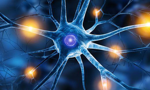 Neue Erkenntnisse im Kampf gegen kranke Nerven