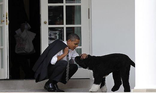 Barack Obama mit seinem Hund Bo