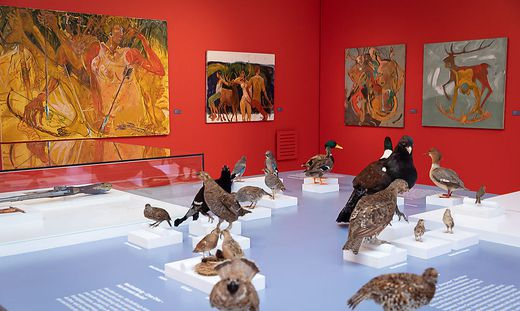 Im Jagdmuseum Schloss Stainz treffen Trophäen auf Kunst und Malerei.