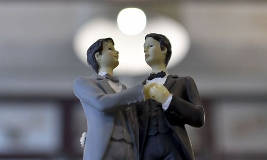 GLEICHGESCHLECHTLICHE PAARE / EHE FUeR HOMOSEXUELLE / HOMOEHE