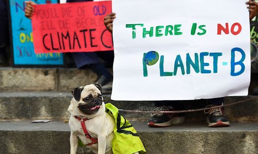 INDIA-ENVIRONMENT-CLIMATE-PROTEST