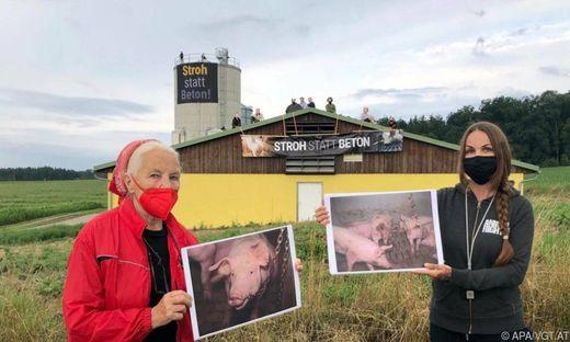 Tierschützer im Bezirk St. Pölten