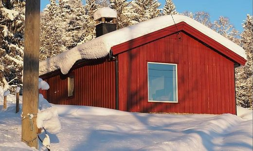Ski nordisch, Langlauf, Doping, Norwegen