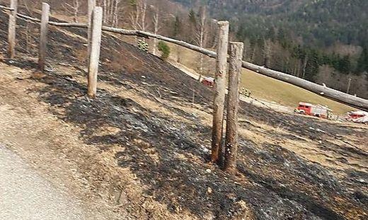 Die Feuerwehren löschten den Wiesenbrand rasch