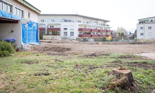 Vor dem Herbst wird im Schlosspark sicher nicht gebaut. Es liegen keinerlei Anträge vor und im Sommer ist Baulärm ohnehin zu vermeiden, sagt die Bürgermeisterin