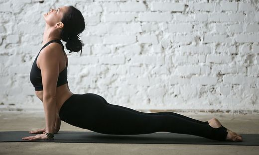 Young yogi attractive woman in upward facing dog pose, studio