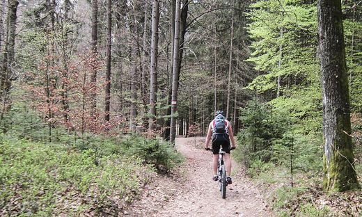 Immer mehr Mountainbiker erobern das Kreuzbergl.