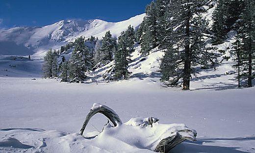 Die Ranger führen mit Einschränkungen durch die Winterlandschaft