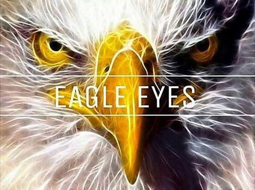 """Operation """"Eagle Eyes"""", ein Projekt der neuen Grazer Bürgerwehr"""