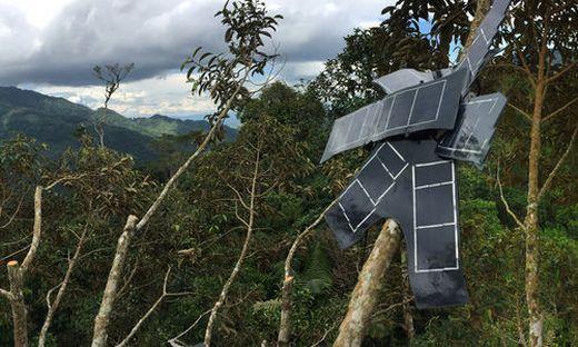 Rainforest Connection sammelt Echtzeitdaten im Regenwald
