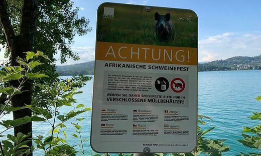 Warnschilder weisen auf die gefährliche Afrikanische Schweinepest hin