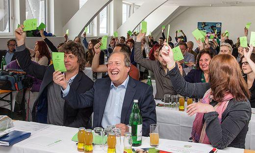 Bei der Landesversammlung 2013 war die Stimmung in den Grünen Reihen noch sehr gut