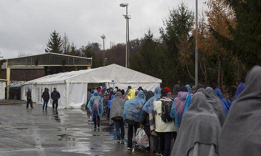 Flüchtlinge auf dem Weg in das Sammelzentrum an der Slowenisch-Österreichischen Grenze im Gebiet von Spielfeld im November 2015.