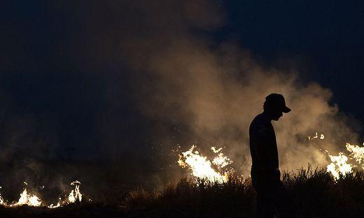 Brände am Amazonas