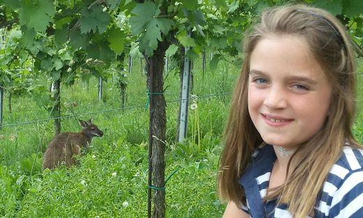 Andrea Stelzl-Stibler erblickte Känguru Nanni im Weingarten ihrer Großeltern in Glanz