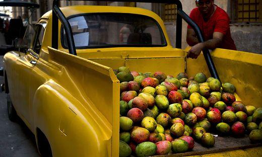 Obst wird in Manila zu Billigpreisen verkauft