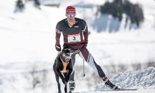 """Daniel Huber aus Trofaiach holte sich mit """"Egil"""" den Weltmeistertitel im Skijöring"""