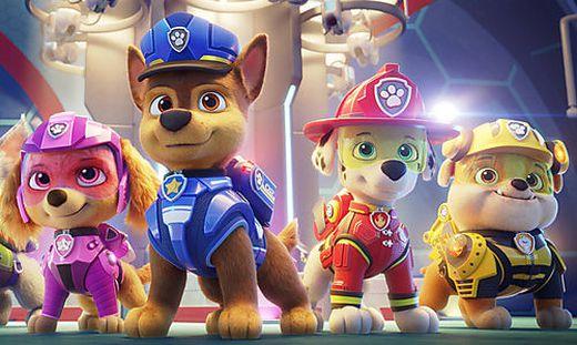 """Skye, Chase, Marshall und Rubble (von links nach rechts) - ein Teil der """"Paw Patrol"""""""
