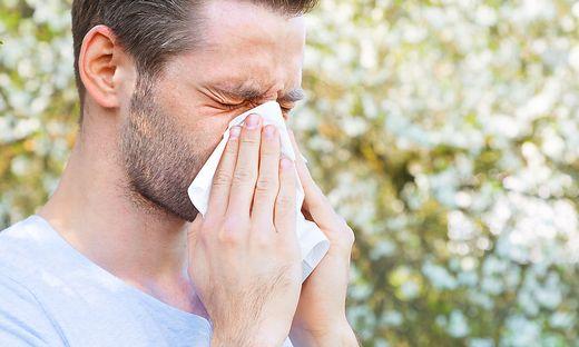 Aggressive Pollen