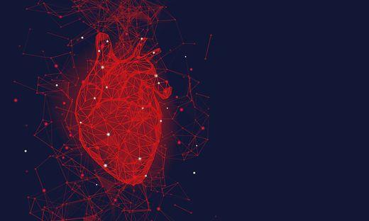 Herz; Gendermedizin; Herzinfarkt