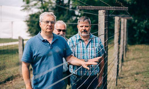 Mitorganisator des Paneuropäischen Picknicks Lázló Nagy mit den Zeitzeugen Alexander Wind und Michael Schalling (v.l.)