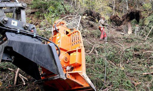 Im Lesachtal wurden durch den heftigen Sturm ganze Wälder zerstört. Die Aufräumarbeiten dauern noch an