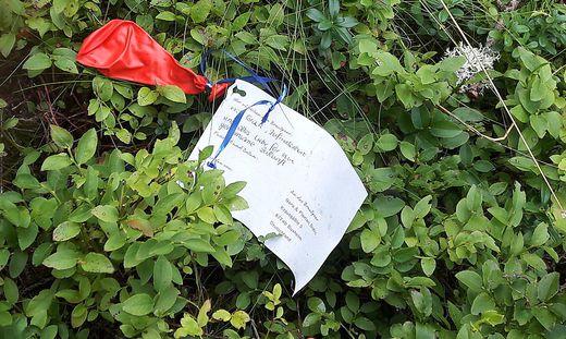 Statt Schwammerl fand ein St. Veiter Ehepaar einen Hochzeits-Ballon, der 350 Kilometer weit gereist war