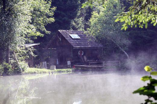 Idylle pur mitten im Wald - mit Holzhaus und Schwimmteich.
