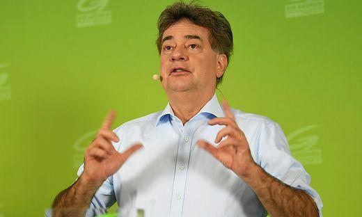Bundessprecher Werner Kogler
