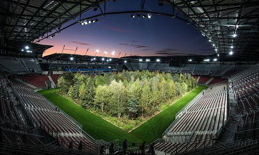 For Forest: Der Wald im Stadion