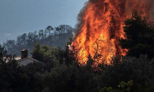 Waldbrände in Griechenland: Fünf Hotels auf Samos evakuiert
