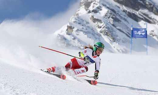 ALPINE SKIING - International ski customs championships