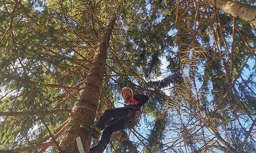 Das Tier saß in 30 Metern Höhe fest