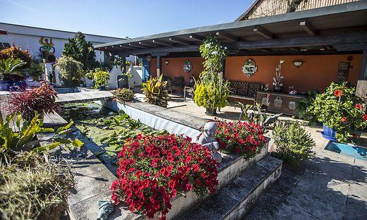 Eines der Gartenparadiese der Blumenolympiade 2018