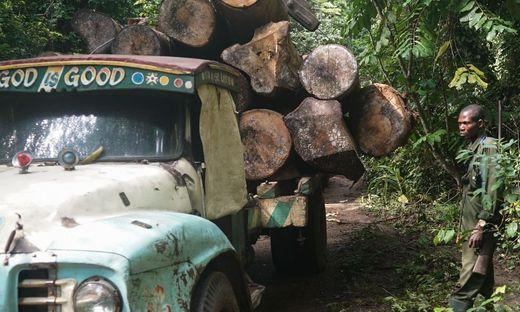 Cargill wird auch für das Abholzen von Regenwald verantwortlich gemachtn