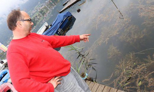 Neumaier zeigt auf das Kraut, das in der Bucht mit den Booten wuchert